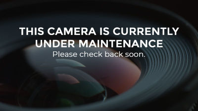 this camera is currently under maintenance
